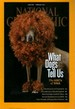 National Geographic : February 2012 - Dog Dna -tsunami Science