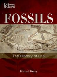 Fossils - the History of Life