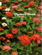 Plantas e Flores Volume 1