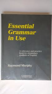 Essential Grammar in Use a Reference and Practice