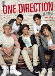 One Direction no Limits