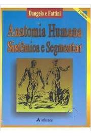 do livro anatomia humana sistemica e segmentar fattini