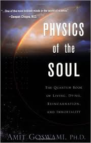 Physics of the Soul: the Quantum Book of Livin Dying  Reincarnation ..