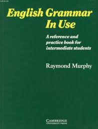 English Grammar in Use - a Reference and Practice Book