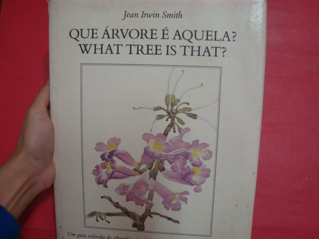Que Árvore é Aquela ? What Tree is That ?