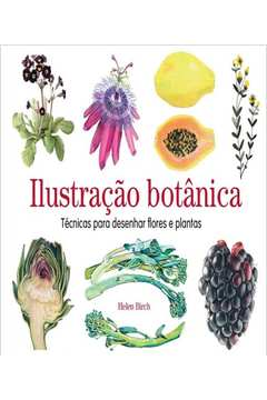 Ilustracao Botanica - Tecnicas Para Desenhar Flores E Plantas